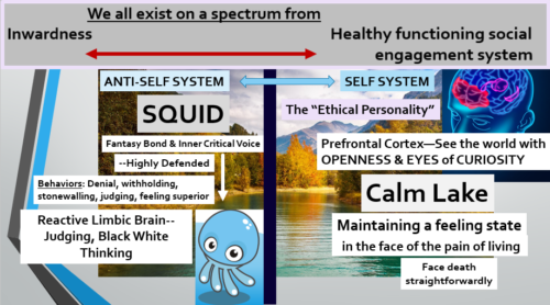 Fantasy Bond ENTIRE THEORY explanation screen with SPECTRUM image added