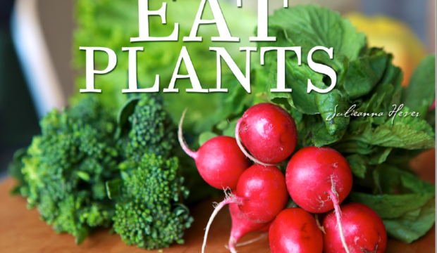eat plants SLIDE